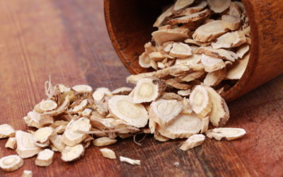 Astragalus for Testosterone: More 'T' from the Far East?